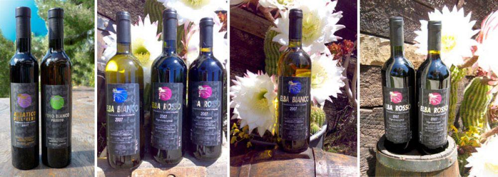 La produzione di vino dell'isola d'Elba della'Azienda Agricola Mazzarri
